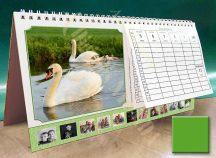 Asztali naptár - zöld színű képkeret